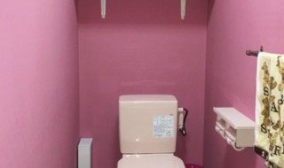 DIY  トイレ ペンキ